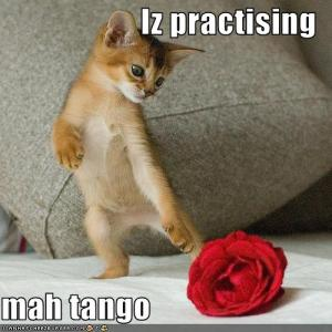 """Did you shoot at his paws and shout """"Dance monkey! Dance!"""""""